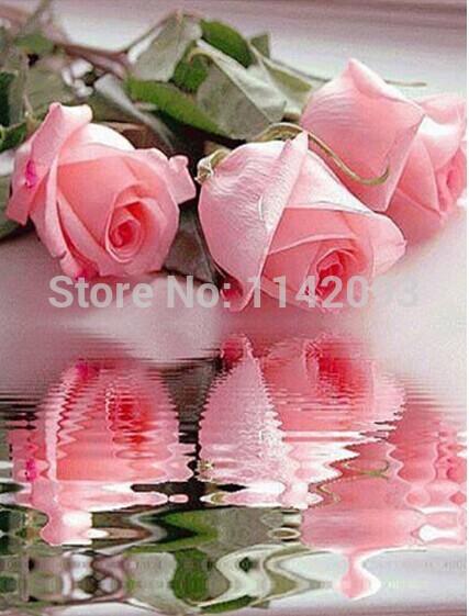 Full Diamond Embroidery Cross Colorful Pink Rose DIY Square Stick Drill Drawing Resin Diamond Painting Rhinestone Flower 30x40.(China (Mainland))