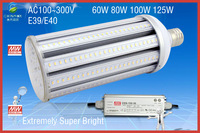 Huge Lumen's LED Corn Bulb, samsung LED source chips light,Extremely super bright Lamps,E39/E40 60W 80W 100W 125W,AC100-300V