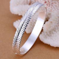 B173 925 sterling silver bangle bracelet, 925 silver fashion jewelry Setaria closed bangle /aphajgoa axgajona