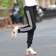 Women Four Seasons Casusl Sport 3-Lines Harem Pants Sweatpants Pure Cotton High Waist Sports Pants Skinny Plus Size Trousers(China (Mainland))