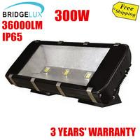 300W Bridgelux Brand flood light led floodlight,85-265V,>36000lm high bright,3 years warranty