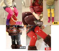 2014 winter new sun flower girl's clothes children thickened not inverted velvet Leggings Pants