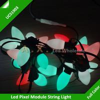 Led Pixel Module UCS1903 Full Color RGB Waterproof IP65 DC5V;1000Pcs a String + 1Pcs Remote Controller