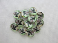 Fashion alloy mixed noos snap charms origami owl charms 50pcs/package wholesale glass locket charms