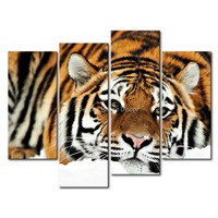 3 Piece Wall Art Painting Tiger Lying In The Snow Picture Print On Canvas Animal 4 5 The Picture Home Decor Oil Prints
