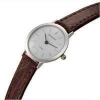 Brand Baishuns Slim Watch Women Casual Leather Strap Wristwatch Thin Ladies Watches Relogio Feminino