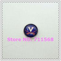 Virginia Cavaliers Floating Charm SEC Virginia Logo Locket Charm For Glass Floating Locket Accessories