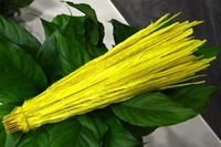 Wholesale 100pcs Yellow Pheasant Tail Feather 50-55cm 20-22inch Bleached and Dyed lady amhurst pheasant Feathers