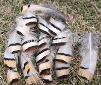 Wholesale,20pcs beautiful natural chukar feathers  FREE shipping