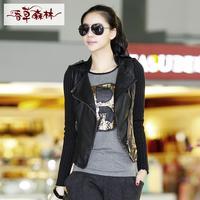 New 2014 fashion women's slim Spring and Autumn Ladies jacket small leather vanilla Forest Korean yards short coat jacket Slim