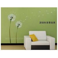 Scrubs transparent PVC transparent film dandelion removable wall stickers