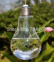 Fashion Hot Light bulb shape glass hanging terrarium vases air plant succulent terrarium for home decoration