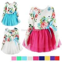 NEW 2014 frozen dress 1PC autumn winter girls dress baby kids girls dress children butterfly dress girl child clothing brands