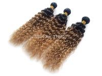 Curly Virgin Brazilian Ombre Hair Three Tone Colors 1B33#27# 1 Piece  Wigiss 50g free shipping