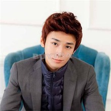 2014 New HO Precious 4 color Handsome Boys Wig Korean Fashion Men's Short False Hair Cosplay Wigs OH