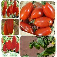 40 pcs Tomato Seed Red banana tomato seeds Vegetable Fruit Lycopersicon Esculentum Free shipping