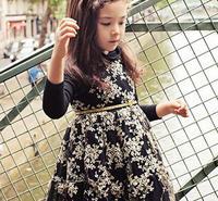 girl gauze princess dress, tutu dresses for girls ,  5pcs/lot   LWH31