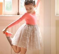 Girl princess dress, tutu dresses for girls ,  girls party dress ,5pcs/lot   LWH32