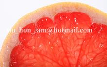 FRUITTEA 6 6g bag 20bag set Grapefruit Puer Riped Tea CHINA YUNNUN Healthy Weight loss Keep