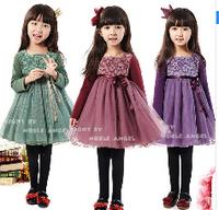 Wholesale NEW Autumn Long Sleeved Lace Girl Dress Kids Tulle Dress Purple,Wine 4pc/ lot