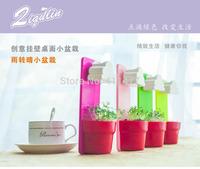 Free Shipping Rainy Pot Wall Decor Flowerpot Hanging Flower Vase 4 Colors