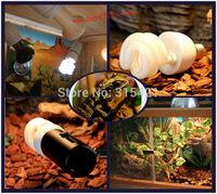 1Pcs/lot Reptile Compact Fluorescent Vivarium Lamp Light 10.0 UVB UVA UV 26W E27 Screw P415