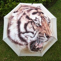 Free shipping  2014 hot sale  traditional chinese painting umbrella / east-northern tiger paten umbrella /umbrella for men