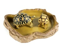 Reptile food bowl of water natural resin