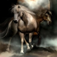Art Deco handmade oil painting on canvas home decoration living room Inkjet horse animal pictures