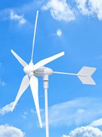 1pcs 5 blade 600w mini wind generator +1pcs 600w wind turbine controller
