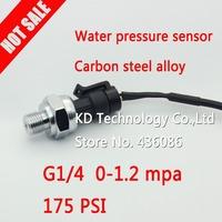 Water pressure sensor,gas pressure sensor  G 1/4, 0-1.2 MPa