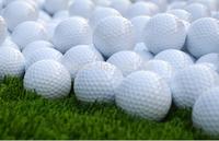 Free shipping new 2014  Brand New PRO V1x Two Piece Golf Balls Training the ball (12pcs/box)