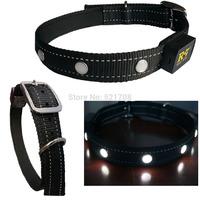 Flashing LED Pet Collars Dog Nylon Adjustable Dog Collar, Black Dog Collars for Large Dogs