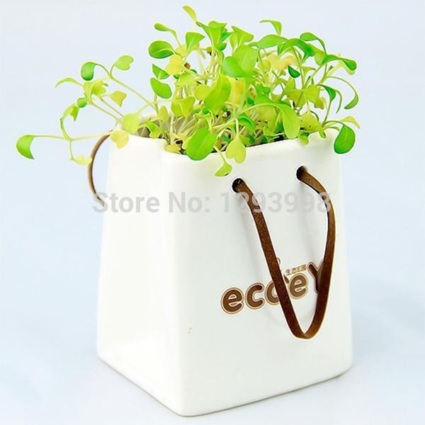 livraison gratuite creative sac main en pot plantes bonsa bureau pots de fleurs pots. Black Bedroom Furniture Sets. Home Design Ideas
