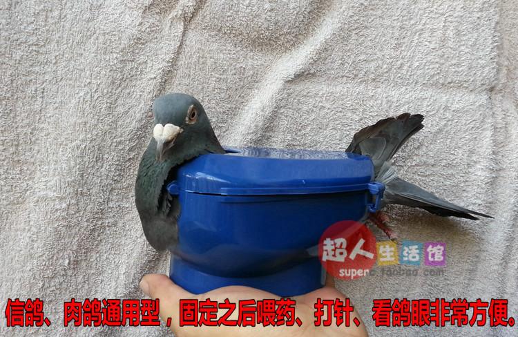 Dove fixator single medicine injections see pigeon eyes set artifact universal eon drug fixed frame occupation racing tool(China (Mainland))