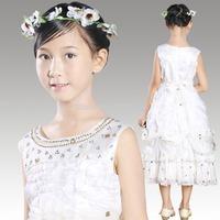 2014 New Hot Brand Baby Girls Dresses girls Princess Party Dress, Cute Frozen Tutu Qaulified Perform Cloth, Princesses Dress H02