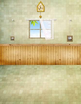 8FTx12FT Bathroom Taps Clock Window Tiles Floor Wooden Props Custom Backgrounds Photography Studio Backdrops Vinyl 8x15 10x20(China (Mainland))