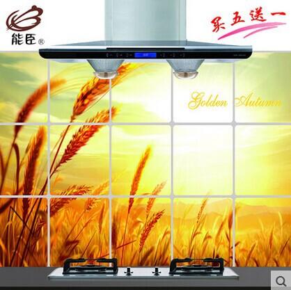 frete grátis energia ministro cozinha aqueça o óleo etiqueta parede rei anti- fumaça fogão com azulejos armários 5 ganhe 1(China (Mainland))