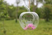 Light bulb transparent diy apple flower glass vase modern fashion hydroponic decoration 2014 vase glass pots