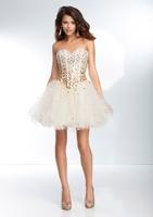 Sweetheat with fish bones short prom dresses christmas coctail dress bg_9254