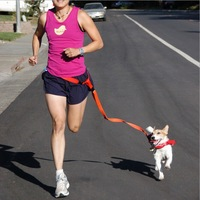 Sport Running Dog Pet products Hauling cable Leads Collars Traction belt dog traction rope belt Free Shipping