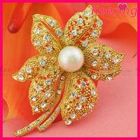 Free Shipping Decorative Jewellery Cheap Women Brooch WBR-1427