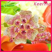 Free Shipping Fashion Crystal Rhinestone Brooches For Women WBR-1434