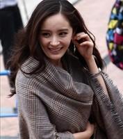 2014 New design autumn and winter Korea Plaid ladies shawls Imitation cashmere warm scarves 210*90cm free shipping