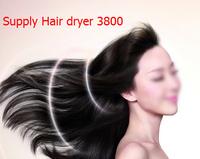 10pcs/lot Professional 3800 Hair Dryer Onion Secador De Cabelo Hair Dryer Styling tools 110V-240V EU/US/IK/AU ECO Friendly