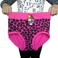 L,3XL plus size women underwear 100%bamboo fiber women briefs women panties panty print knickers retail 1 piece selling
