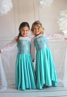 2014 New Frozen Elsa Dress Fashion Costume Princess Dress Girls Kids Party dress free shipping