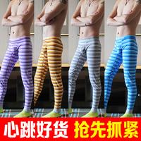 Male stripe thermal long johns separate 100% cotton basic cotton wool pants tights warm pants plus size sleepwear pajama pants