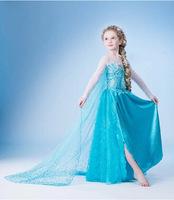 New 2014 Frozen Elsa dress Girl Princess Dress Summer frozen cosplay long dress Elsa Costume,baby kids dresses Free shipping