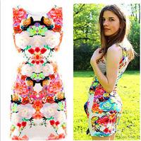 Fashionabe Printed Package Hip Sexy Slim Ladies Sleeveless Dresses TND002
